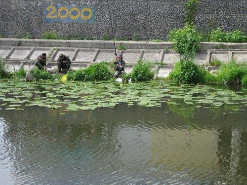 Рыбалка на р. Устя.