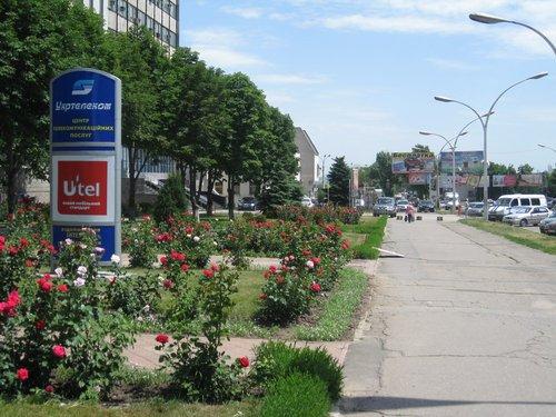 На одной из центральных улиц — ул. Коцюбинского.