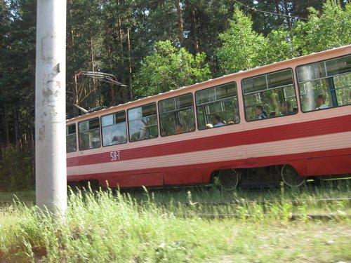 Трамвай идёт, словно в лесу!