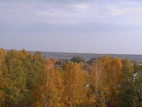 Вид с балкона, но видно, что деревьев под окном как в лесу.